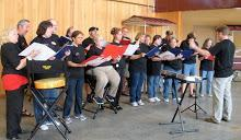 Twin Cities Labor Chorus performing